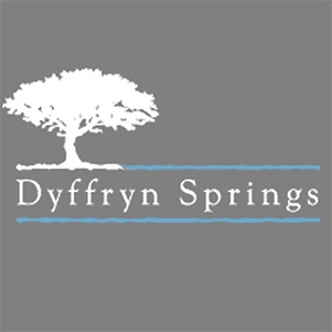 Wedding DJ Cardiff Swansea City DJs Weddings Disco dyffryn springs